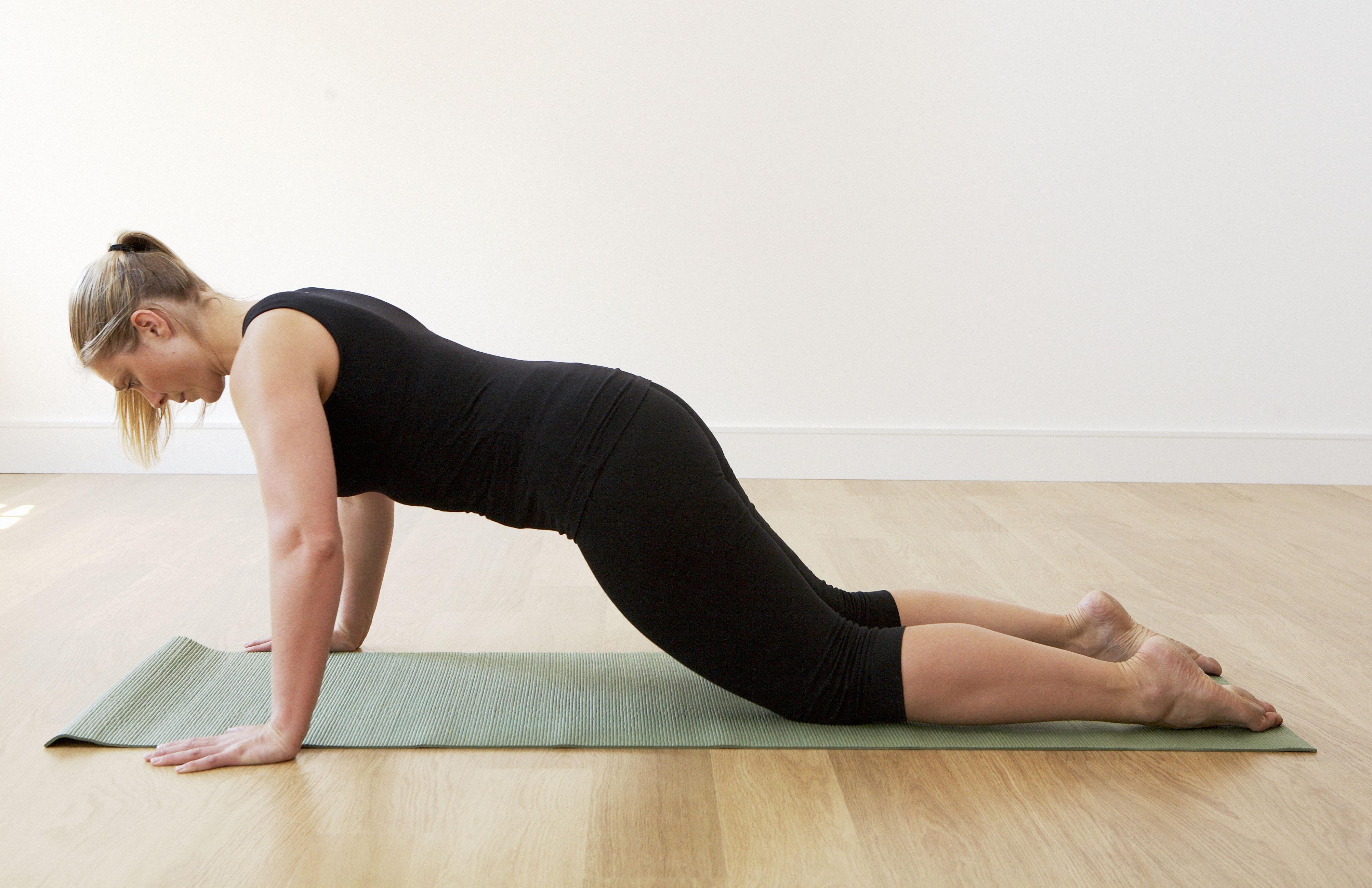 Level 2 plank